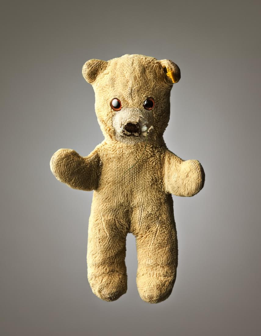 Teddy                         A 16 éves mackó, Teddy Luke Foley tulajdona, mégpedig Luke születése óta. Mellétették a babaágyban, és azóta szinte elválaszthatatlanok. Szinte, ugyanis Teddy többször elveszett, egy alkalommal Tunéziában is, ahol mérföldekkel arrébb került elő.