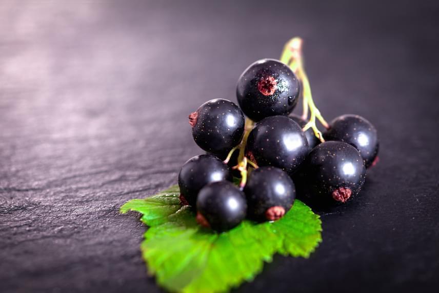 A fekete ribiszke bogyója és a levele is rendelkezik vízhajtó tulajdonságokkal, ugyanis ez a növény is gazdag káliumban. A bogyók fogyasztásával emellett értékes antioxidánsokat, köztük C-vitamint vihetsz be, míg gyulladáscsökkentő összetevőik tehermentesítik a szervezetedet, így az könnyebben éget zsírt. Főzz a levelekből immunerősítő teát, vagy fogyaszd a bogyókat nyersen, így meggyorsíthatod a szervezetedből a húgysav kiürülését, illetve apaszthatod a lerakódott vizet.