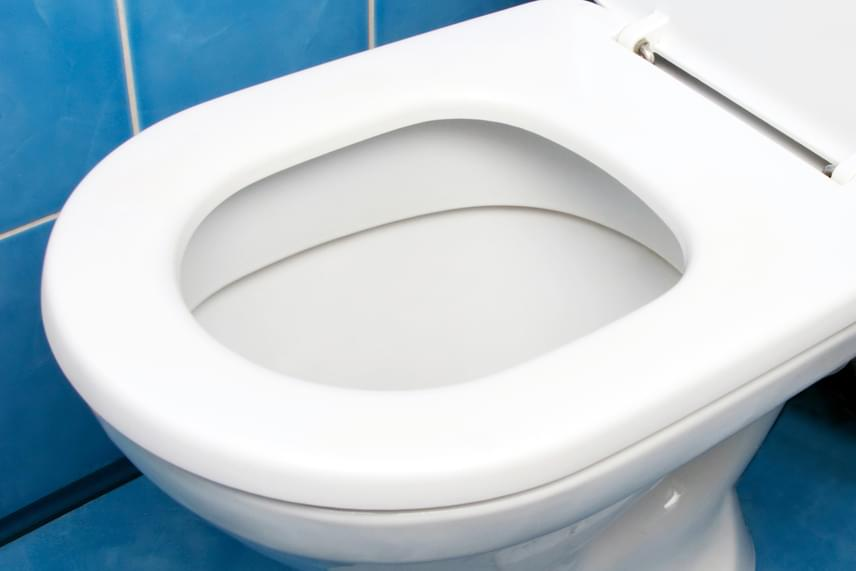 WC-használat - A vizelet ideális mennyisége napi egy-másfél liter, a színe pedig halványsárga. Az orvosok tág intervallumot határoznak meg, mert egészségesnek számít az, ha valaki napi négy-tíz alkalommal üríti ki a hólyagját. Vannak olyan tényezők, amelyek befolyásolják a vizelet ürítésének számát, például a koffeintartalmú italok, de a hólyaghurut is.                         A székletürítésre szintén nem lehet konkrét számot mondani, de a napi háromszori és a heti háromszori is normálisnak mondható.