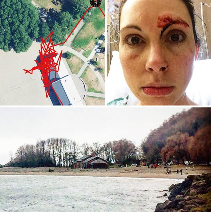 A kép bal felső sarkában látható piros firkának tűnő vonal az az út, melyen a támadó Kellyt üldözte. Jobbra Kelly, alul pedig a helyszín látható.