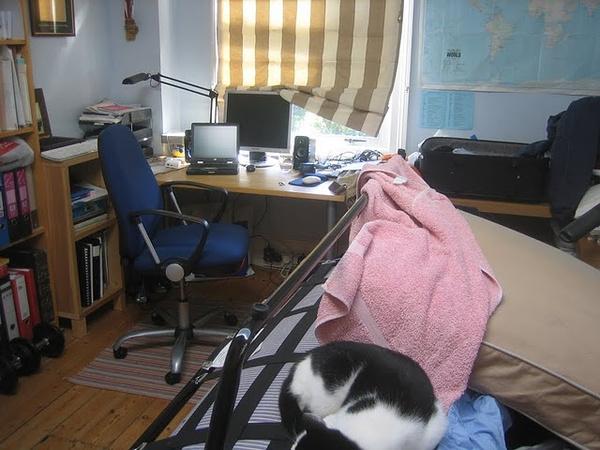 Volt, hogy macska is járt a szobához