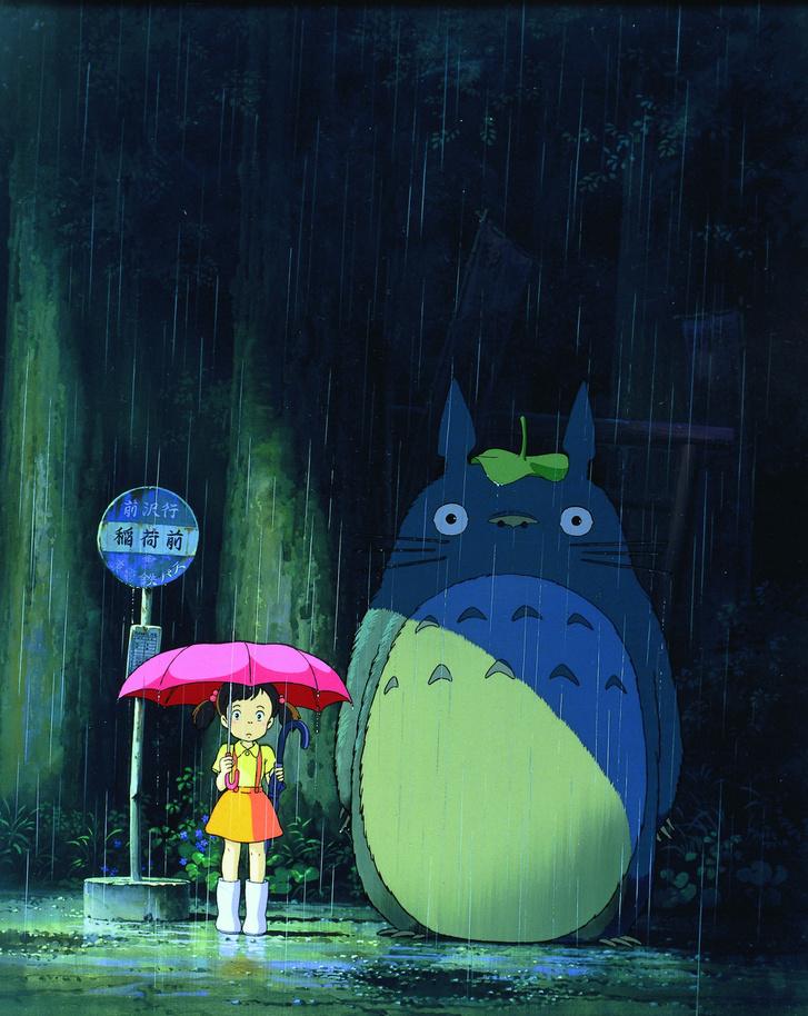 Totoro, a varázserdő titka