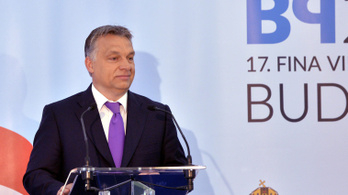 Orbán-közeli üzletemberek tarolnak a vizes vb közbeszerzésein
