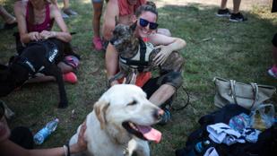 Kutyás futás kutya nélkül: és még jó is volt!