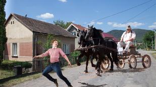 Egy ormánsági apa kipróbálta, hányszor lehet a lovaskocsi elől az árokba ugrani