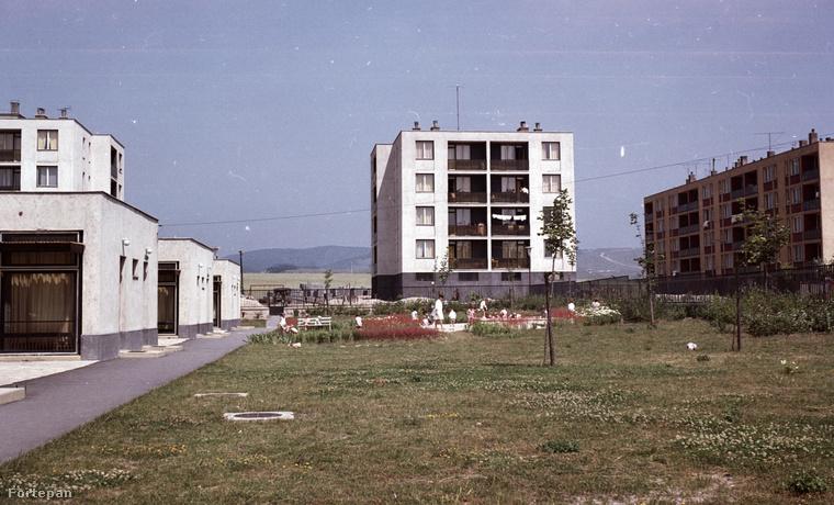De nemcsak a vízpart tartozik a nyárhoz, hanem a lakótelep is.1969 -ben Várpalotán a Tési-dombon, a bölcsőde és udvara látszik a Körmöcbánya utcában