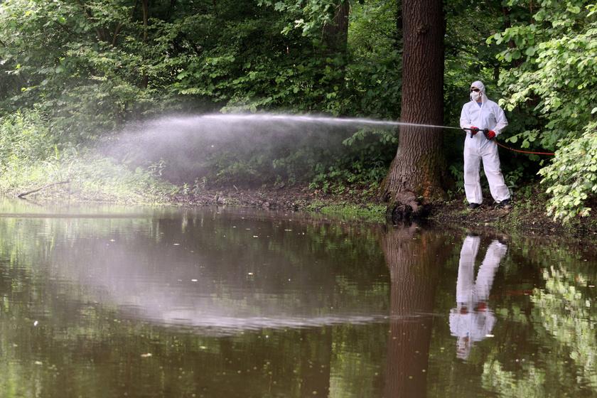 A földi biológiai irtás során a vegyszert a szúnyoglárva tenyészőhelyén közvetlenül a rovarok élőhelyére permetezik.