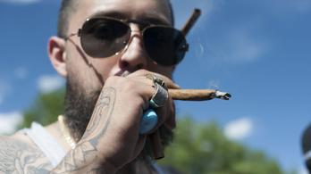 Még mindig a fű a legnépszerűbb magyar drog