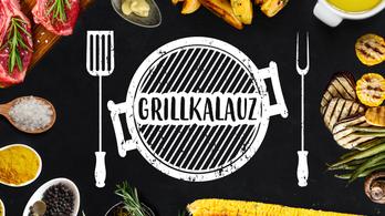 Tippek, trükkök, praktikák és receptek grillezéshez