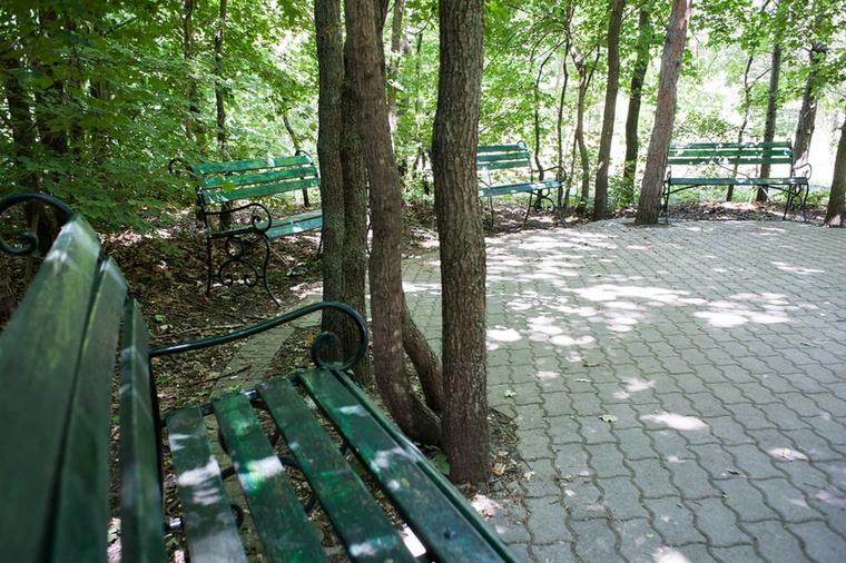 A parkban egyébként nemcsak medvék élnek, vannak rénszarvasok és mosómedvék és egy nagyobb területen farkasok is.