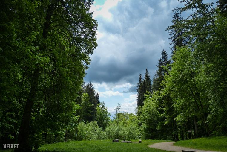 Tűzrakóhely a Baden-Württemberg tartománybéli Schwäbisch Gmünd mellett. Kicsit természetközeli.