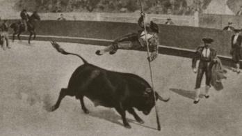 Egyszer volt Pesten bikaviadal