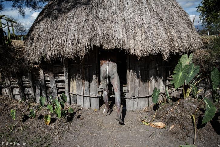 Egy pápaui törzs tagja, a Honaira készíti elő magát.