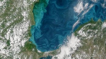 Zöldbe fordult a Boszporusz-szoros vize