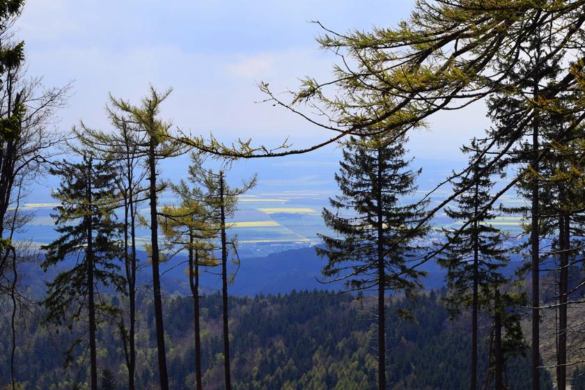 Kőszegen az első szakasz Írott-kőtől indul, és 70 kilométeren át, egészen Sárvár vasútállomásáig tart, melyet sok túrázó kisebb részekre oszt. A panoráma és az ablánci erdő is fenségesen szép.