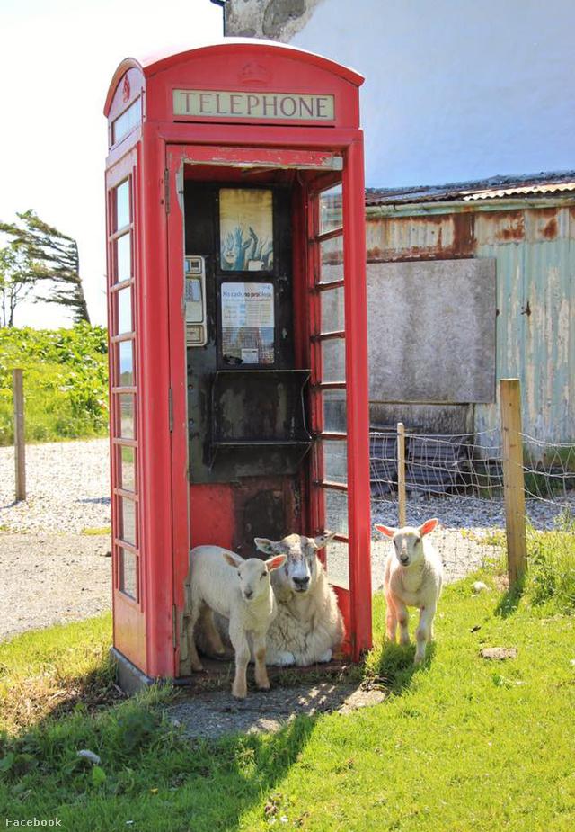 Bukolikus idill Skye szigetén