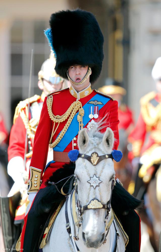 Vilmos herceg a szokásos sármjával, lóháton érkezett, és bizonyára nagyon élvezte a dolgot.