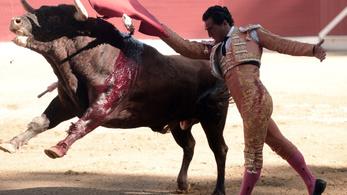 Halállal végződött egy bikaviadal Franciaországban