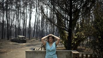 Erdőtűz Portugáliában: 62 halott, és sok súlyos sérült