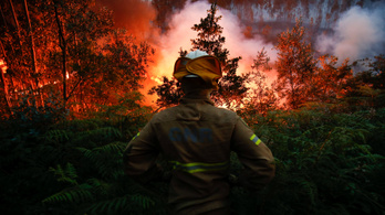 Tizenkét embert mentett meg a pusztító lángok elől