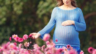19 érdekes tény, amit nem tudsz a terhességről