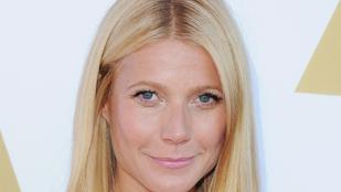 A bikinis Gwyneth Paltrow látványa a legjobb dolog, ami a mai napjával történhet