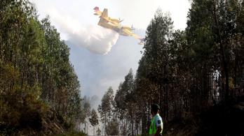Cáfolták a tűzoltó repülőgép katasztrófájáról szóló hírt