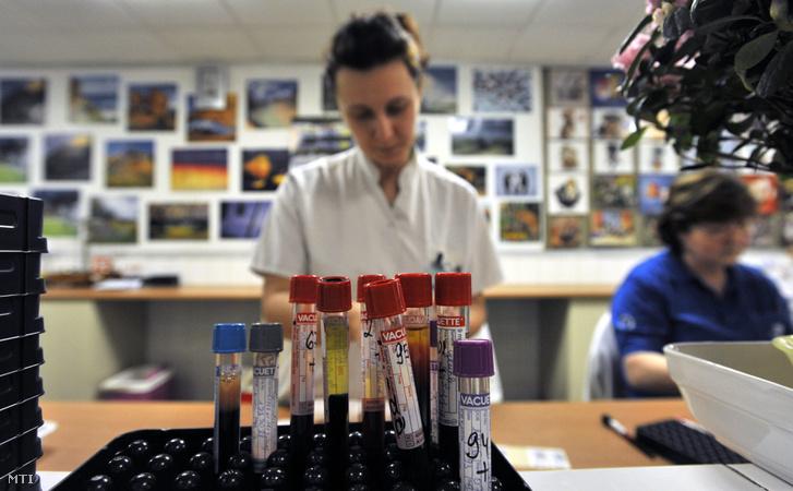 Munkatársak dolgoznak a központi laboratóriumban a Fővárosi Önkormányzat Jahn Ferenc Dél-pesti Kórházban.