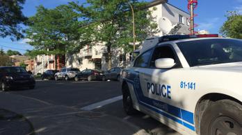 Megkéseltek egy rendőrt Michigan államban