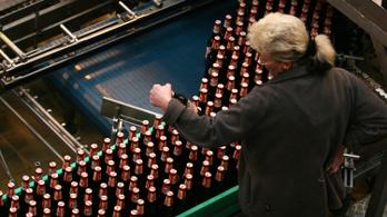 A kánikula miatt vedelik a sört a magyarok, teljes kapacitással pörögnek a gyárak