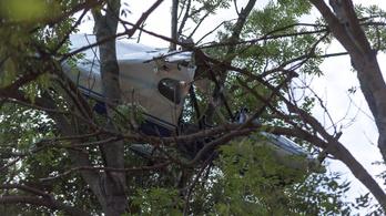 Fennakadt egy kisrepülőgép a fán Zirc mellett