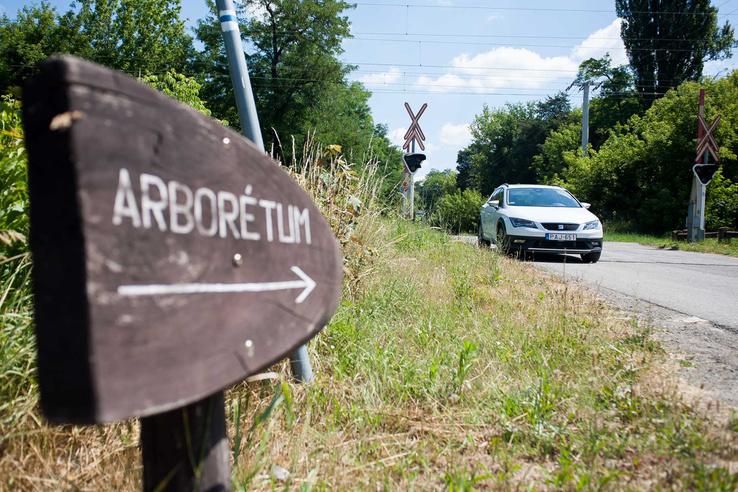 Aki a Gödöllői Arborétum felé veszi az irányt, meressze nagyon a szemét, hiszen csak egy kis fatábla jelzi, hogy merre található.