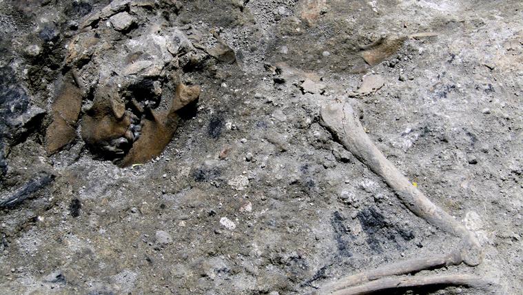 Egy kisebb Pompejire bukkantak Rómában egy metró ásatásánál