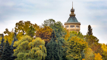 Fedezze fel a Margitszigeten Arany János kedvenc helyeit!