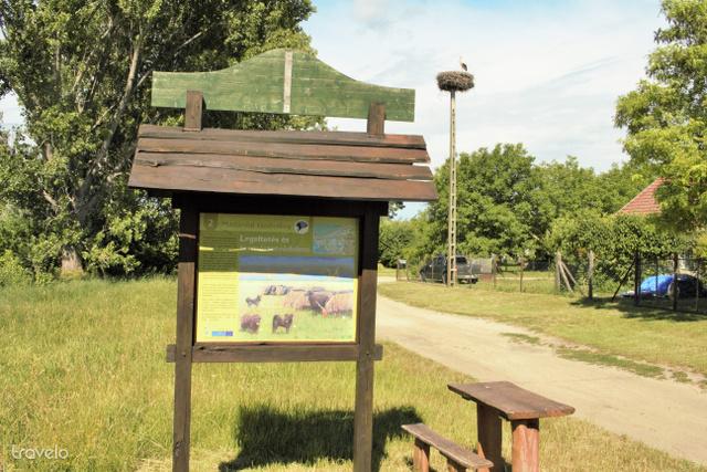 A Madárdal-tanösvény második állomása a falu szélén, avagy csendélet gólyával