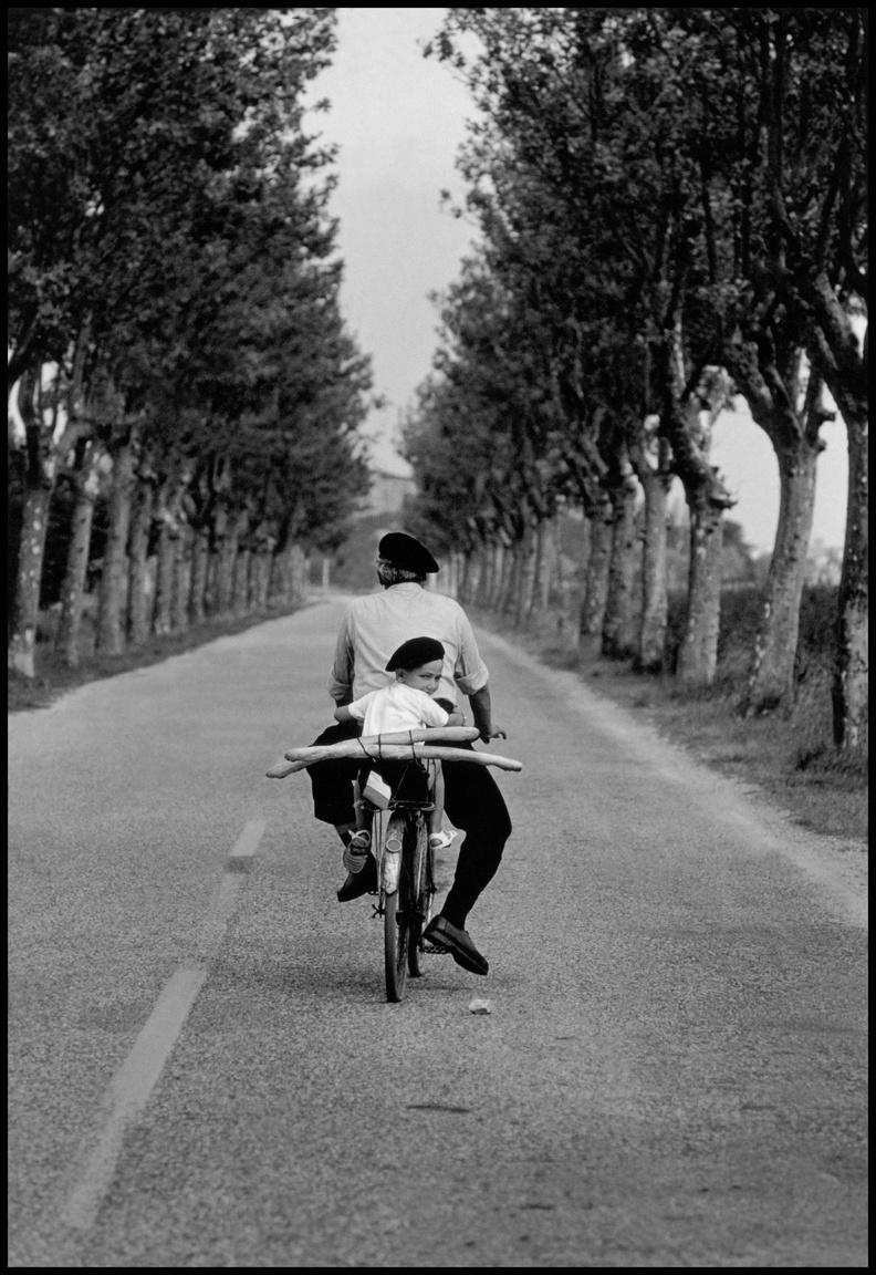 Provence, Franciaország, 1955