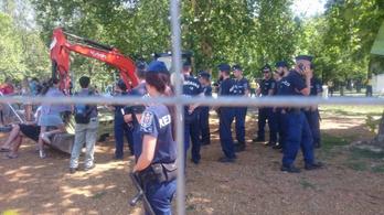 Hatalmas platánokat ásnak ki a Ligetben, a civilek ismét összecsaptak a rendőrökkel