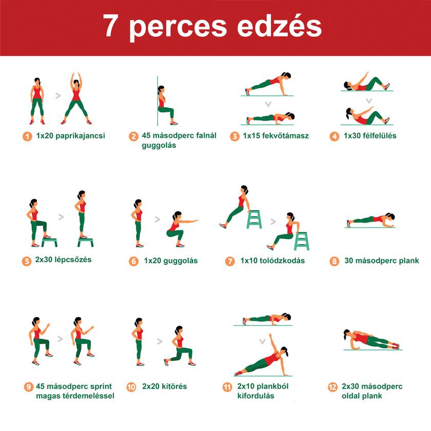 7 perces