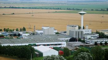 Leáll a sörgyártás a martfűi Heineken-gyárban, Sopronban viszont bővítenek