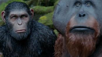 Kaphat egy majom is Oscar-díjat?