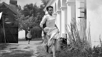 Imádta a zsűri Török Ferenc filmjét Berlinben
