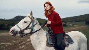 A lovak ferde szemmel néznek a mérges emberekre
