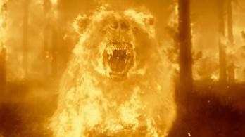A lángoló medve még a tűzoltóknak is sok