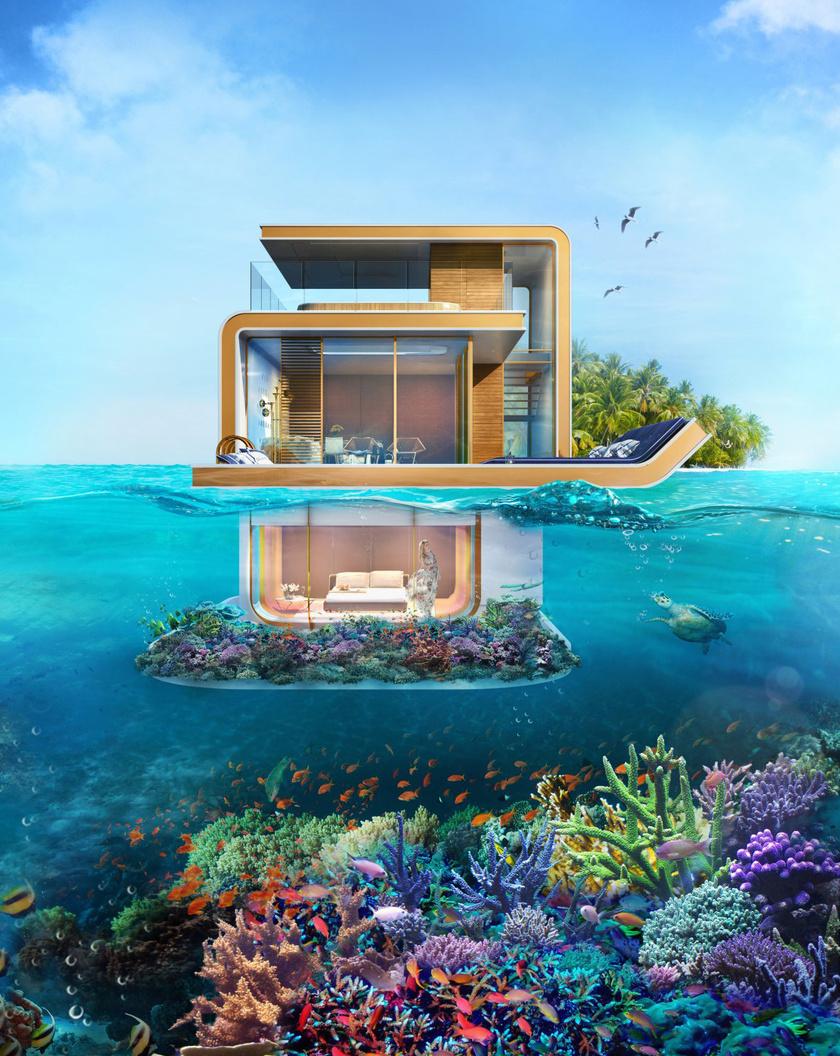 A ház alakja a csikóhalakéhoz hasonlít, innen kapta nevét is.