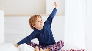 Hogyan szokjatok vissza a gyerekekkel a koránkelésre?
