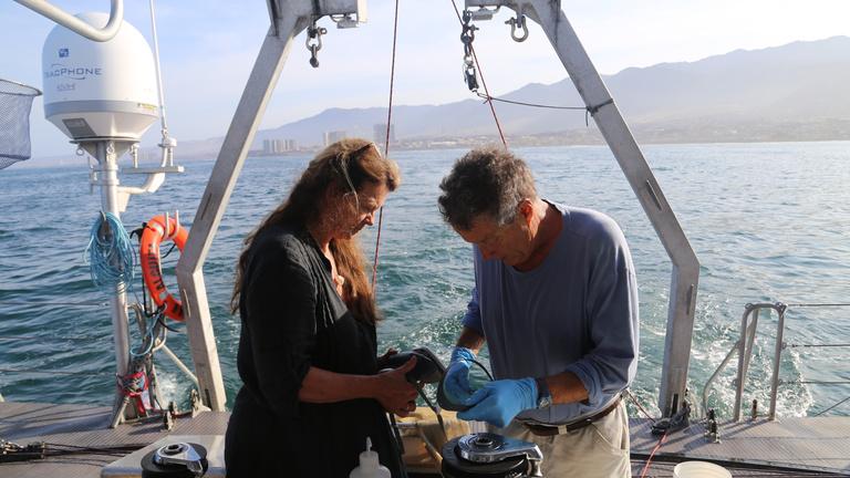 Elképesztő méretű szemétszigetet találtak a Csendes-óceánon