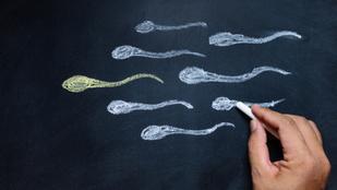 Esik a spermaszám, kihal az emberiség