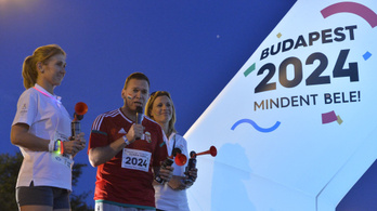 Fürjes szerint akkora siker volt a vizes világbajnokság, hogy esélyünk lett volna az olimpiára