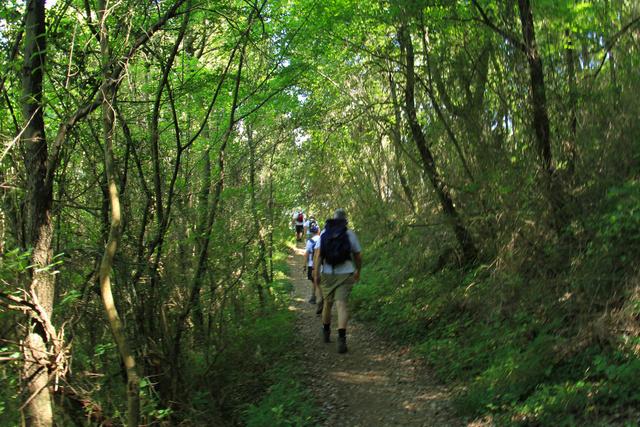 Közigazgatásilag a falutól mintegy négy kilométerre fekszik Labin kisvárosának központjától, amit a domboldalon túra-útvonalakkal is összekötöttek