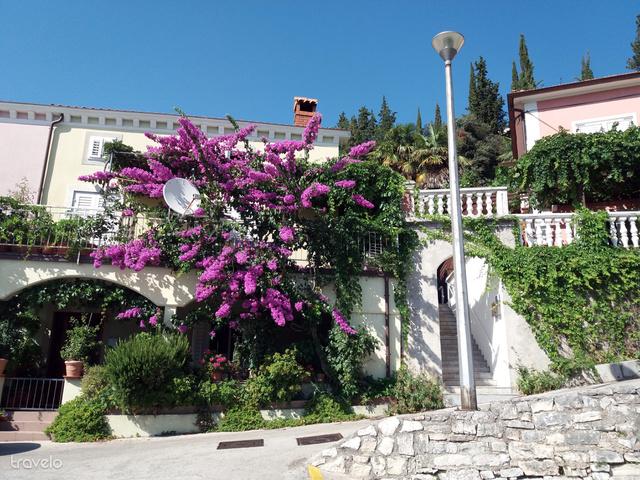 A vakítóan fehér házak homlokzatainak mindenhol jól állnak a jellegzetes, ciklámen színű mediterrán futónövények